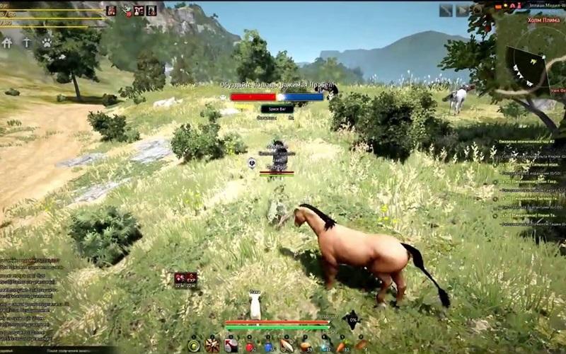 30.1как поймать лошадь