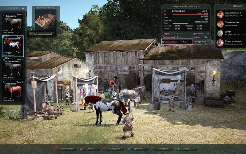 31.3скрещивание лошадей