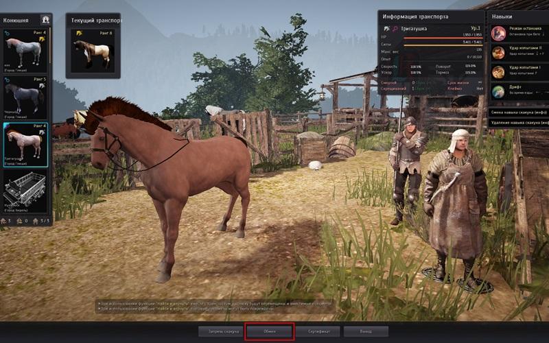 31.4скрещивание лошадей