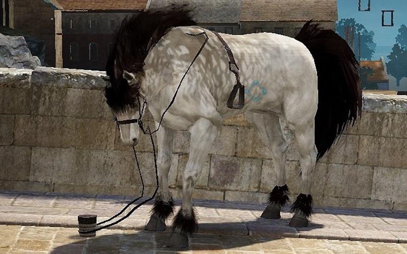 31.5скрещивание лошадей