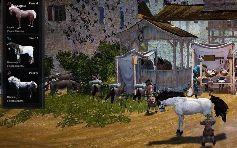 31.6скрещивание лошадей