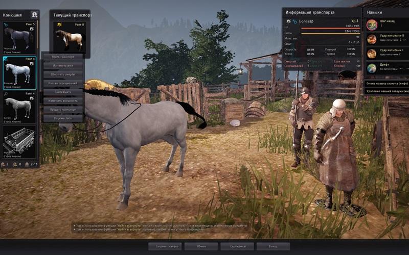 34.3разведение лошадей
